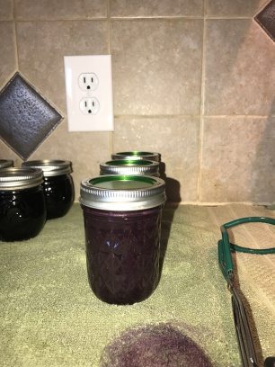 Final processed Blueberry Butter