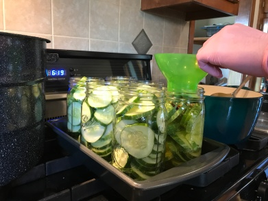 Pouring Boiling pickling brine in heated jars to make Easy Bread & Butter Pickles