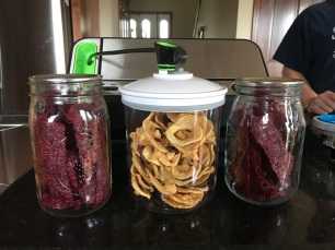 Cranberry fruit leather and dehydrated apple rings